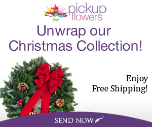 Unwrap Our Christmas Collection!