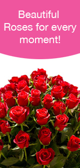 Rose flower meanings by their color variety and numbers from the flower experts mightylinksfo